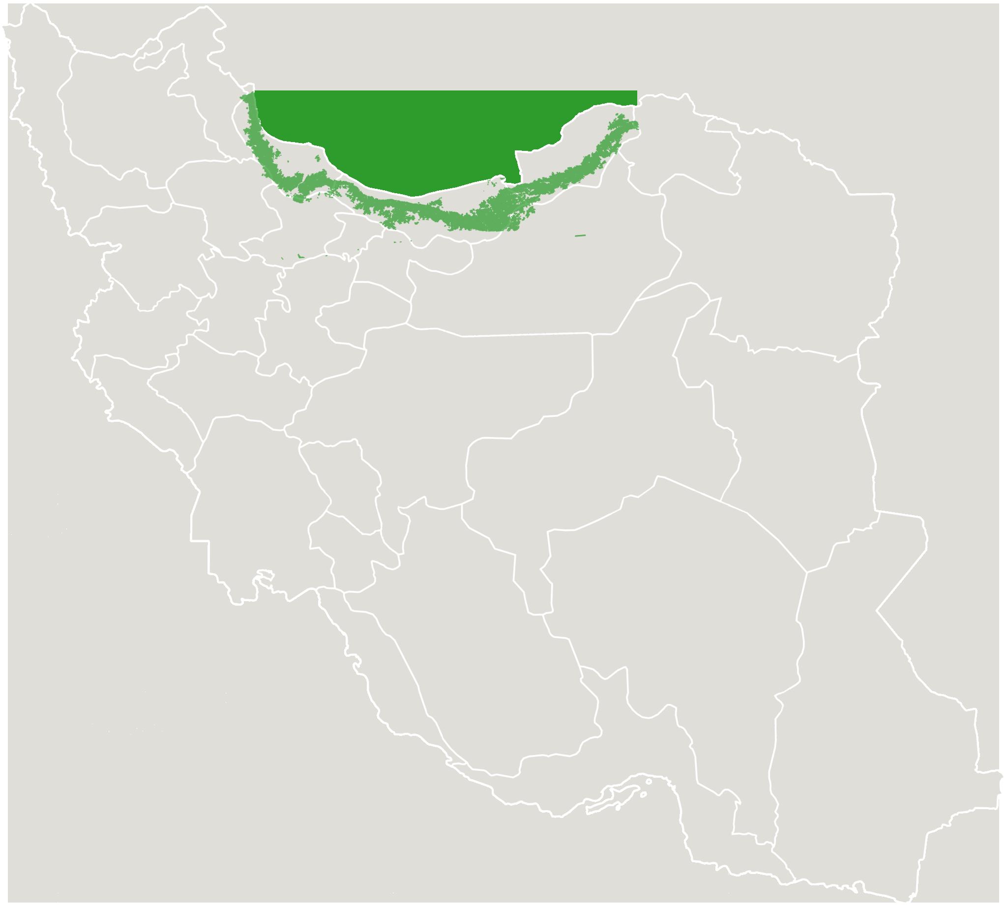 نقشه هیرکانی