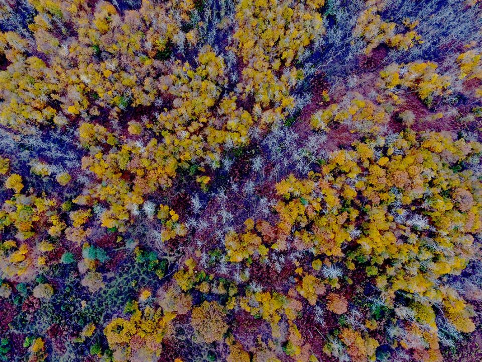 عکس هوایی لیشک سیاهکل / زمستان 1399